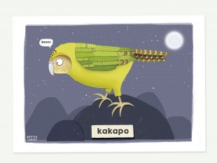kakapo_picture