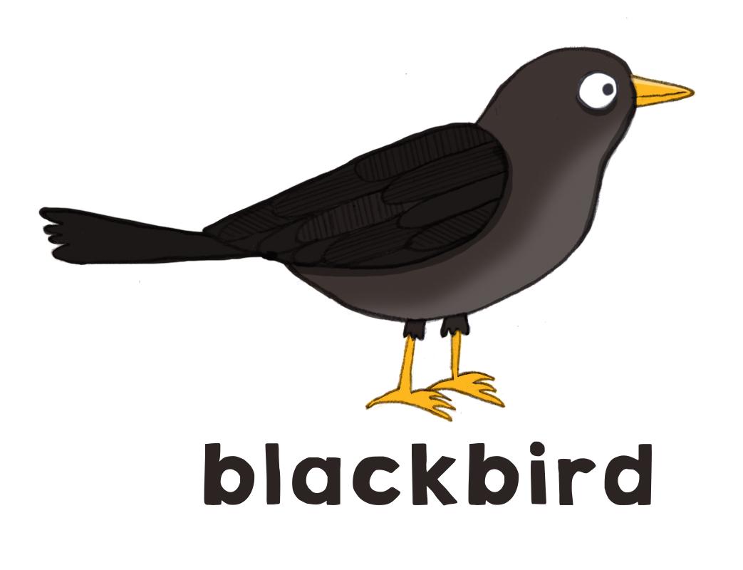 garden birds blackbird sparrow blue tit beetle cherrybeetle cherry rh beetlecherry com bluebird clipart images red winged blackbird clipart