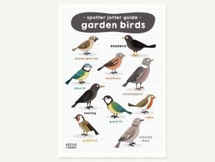 garden birds illustration print