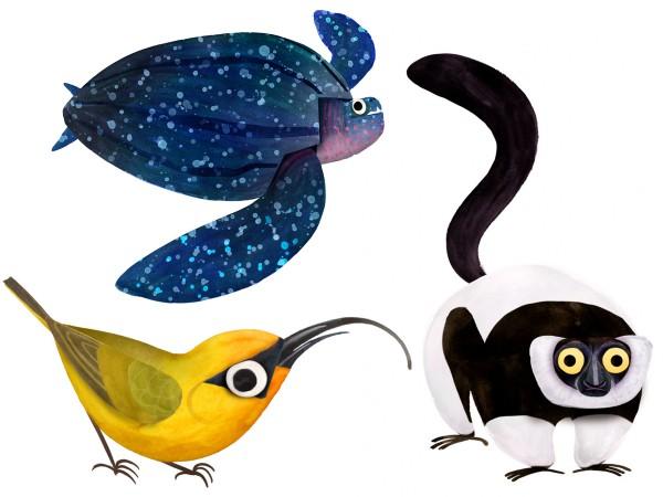 illustration endangered animals