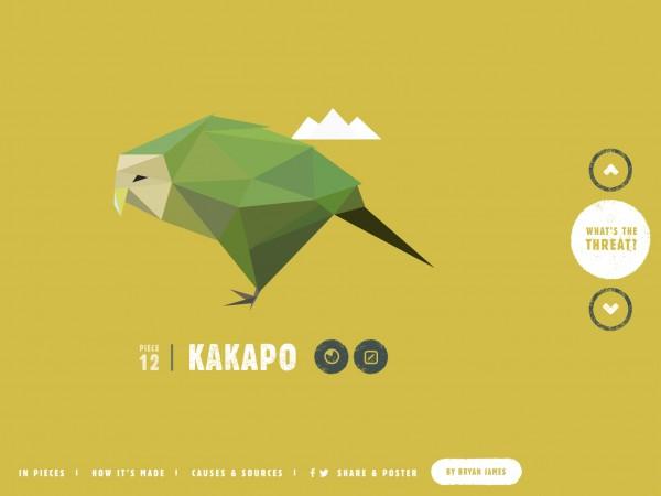 kakapo graphic species in pieces