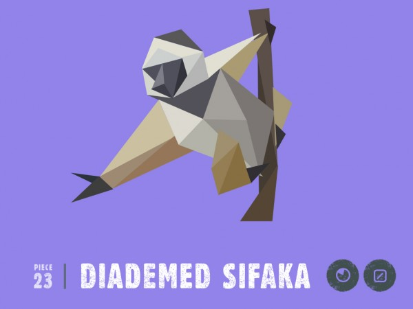 sifaka illustration species in pieces