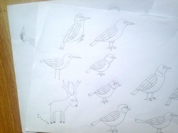 bird sketches beetlecherry