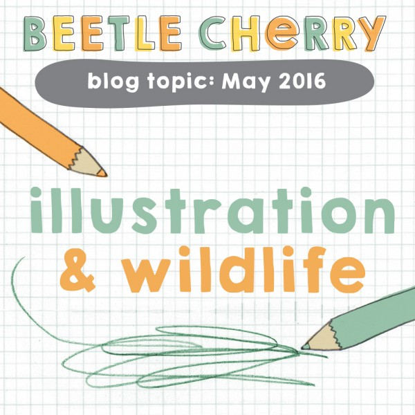 wildlife illustration