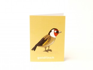goldfinch_illustration_beetlecherry